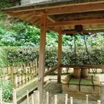 明月院の井戸と庭園 梅雨の鎌倉散策 その3