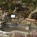 カピバラ温泉でのカピバラ入浴タイム 冬の青春18きっぷの旅ー伊豆カピバラ編 その3