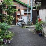 井戸がある町の風景2/2 旧大塚坂下町路地裏散歩 その4