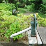 腰越の路地裏にある緑に囲まれた井戸ポンプ 梅雨の鎌倉散策 その6