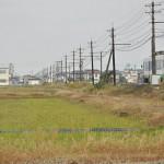 福井鉄道三十八社駅付近の田園地帯で鉄道撮影をする 初秋の北陸旅 その25
