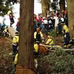 諏訪大社下社の建御柱地点への木落しが完了する 御柱祭里曳き体験記 その3