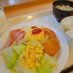 峠の力餅を購入し、奥羽本線赤岩駅で下車する 夏の青春18きっぷの旅 その11