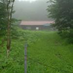 大雨の中、廃墟だらけの大平集落を歩く 夏の青春18きっぷの旅 その14