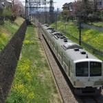 【Tokyo Train Story】菜の花ロード(西武多摩川線)
