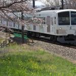 【Tokyo Train Story】春色いっぱい西武多摩川線