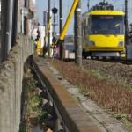 【Tokyo Train Story】東急世田谷線の線路際のネコ