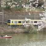 【Tokyo Train Story】お花見&電車見(総武線)