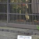 長野県小布施で出会った秋色景色の中のネコ 紅葉の長野旅行 その5