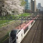 【Tokyo Train Story】成田エクスプレスが桜の木の横を駆け抜ける