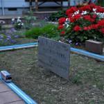 路地裏に広がるプラレールの花園