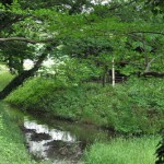 江戸時代の歴史遺産、見沼通船堀を見学する 東浦和散歩 その4