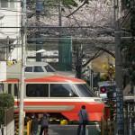 【Tokyo Train Story】桜咲く踏切に小田急ロマンカーのLSE(7000形)が通る