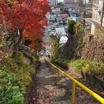 上諏訪の高台から秋景色の眺望を堪能する 紅葉の長野旅行 その20