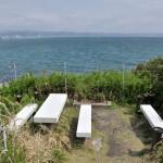 仁右衛門島の潮だまりでナマコに会う! 春の南房総への旅 その16