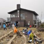 塔ノ岳山頂の尊仏山荘にいる看板猫 神奈川県塔ノ岳登山 その5