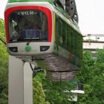 【Tokyo Train Story】新緑の上野動物園モノレール