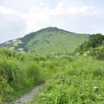 高原の湿地帯、七島八島を散策する 爽やかな高原の旅 その2