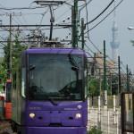【Tokyo Train Story】東京スカイツリーが見える光景(都電荒川線)