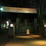 夜の東京に紅葉風景が浮かび上がる 六義園の紅葉ライトアップ2012 その1