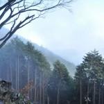 標高727mの景信山が裏高尾山行のゴール地点となる 紅葉の高尾山登山 その7