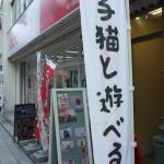 猫カフェの猫家川越店でかわいいネコたちをミラーレスカメラのNikon1 J1でたっぷりと撮影してきた!