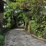 首里城がある山の斜面に造られた首里金城町石畳道を歩く 沖縄・渡名喜島への旅 その12