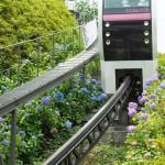 【Tokyo Train Story】紫陽花の季節(アスカルゴ)