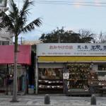 国際通りから一本入った路地裏で出会ったネコと井戸 沖縄・渡名喜島への旅 その14