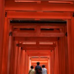稲荷山の鳥居が連続する登山道をひたすら登る 夏の京都旅行2012 その33