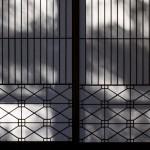 今週の365 DAYS OF TOKYO(1月14日~1月20日) ~ 柴又の山本亭や谷中のネコなど