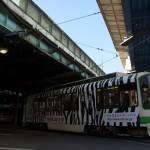 【Tokyo Train Story】ゼブラ色の都電荒川線
