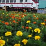 雨と晴れの境目の蟹田から十三湖への津軽半島横断 男4人の青森旅行 その9