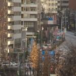 【Tokyo Train Story】ビル街の中を走る都電荒川線