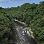 桂川沿いの国道20号線を歩いて猿橋へと向かう 青春18きっぷで行く夏の山梨日帰り旅行 その2
