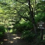 桂川沿いの猿橋公園を散策する 青春18きっぷで行く夏の山梨日帰り旅行 その3