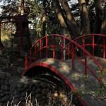 約1200年の歴史を持つ川越の喜多院 冬の川越散策 その3