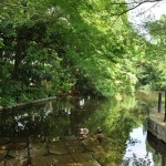 東京都江東区にある横十間川親水公園で無料の和船乗船体験をしてきた(動画あり)