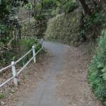 竹の寺として有名な報国寺の竹林を見学する 偽修学旅行2013 鎌倉・江ノ島への旅 その6