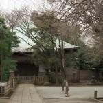 三軒茶屋の最勝寺の井戸ポンプ