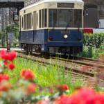 【Tokyo Train Story】梅雨の日差し(都電荒川線)