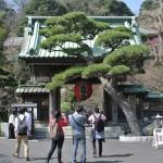 長谷寺を参拝して鎌倉の街を高台から見下ろしてみる 偽修学旅行2013 鎌倉・江ノ島への旅 その16