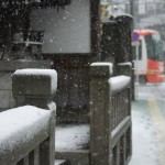 【Tokyo Train Story】門前の雪(都電荒川線)