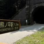 アプトの道の6号トンネルと森のサルたち 夏の青春18きっぷで行くアプトの道の旅 その7