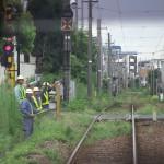 【Tokyo Train Story】東急世田谷線車内より