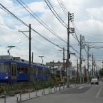 【Tokyo Train Story】花の散歩道(東急世田谷線)