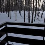 雪が降る中、早朝の森林浴散歩に出かける 春の草津温泉旅行 その17