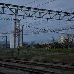 旅の最後は白と緑の200系新幹線に乗車 新発田駅で途中下車する 元気が出る鉄道写真2011の旅 その19