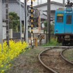 観音駅周辺の森で赤い電車を撮影する 春の青春18きっぷの旅 銚子電鉄沿線散歩編 その4