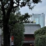 紅葉が始まった増上寺の境内へ 浜松町散歩 その5
